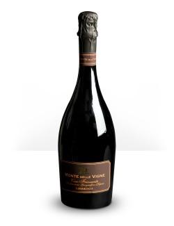Lambrusco IGT selezione Monte delle Vigne 0,75 lt
