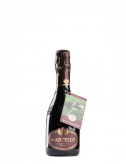 Lambrusco Gran Cru IGP  Marcello Ariola 0,375 l
