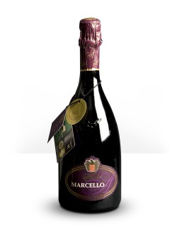 Lambrusco Gran Cru Marcello Ariola 0,75 lt